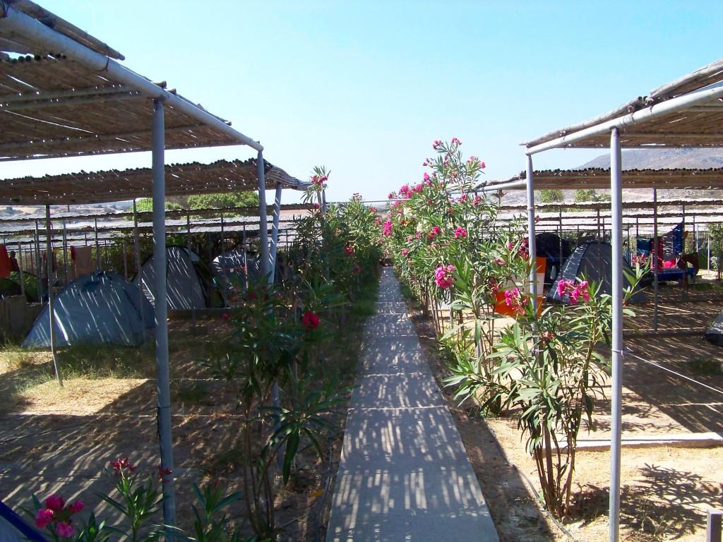 Camping de Milos : l'espace tentes